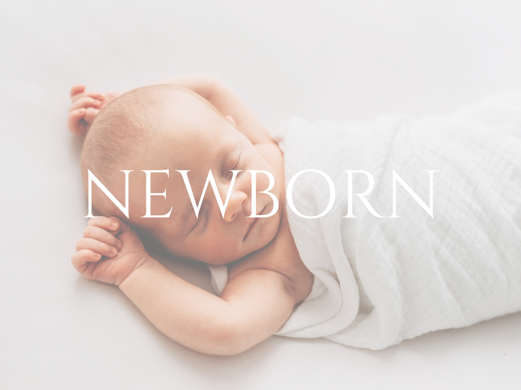 cleveland newborn photographer molly watson photography
